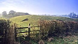 Cross Counties Farm Vets Lutterworth