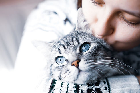 cat cuddle with girl_register_now sectio