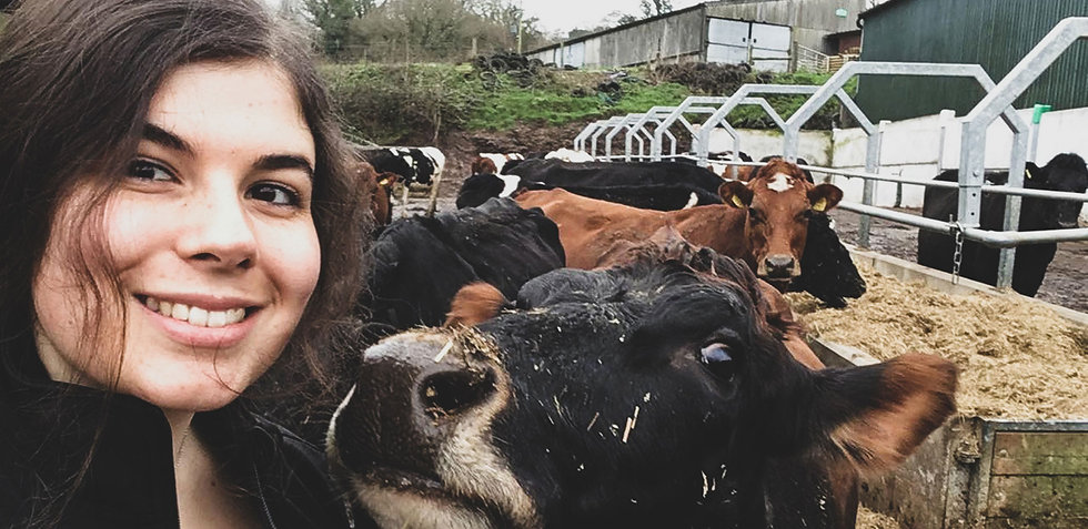 Beth-Conwall-Dairy-Vets-front'.jpg