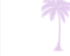 Palm tree background.png