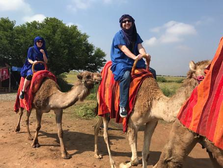 Marrakech - Day 4