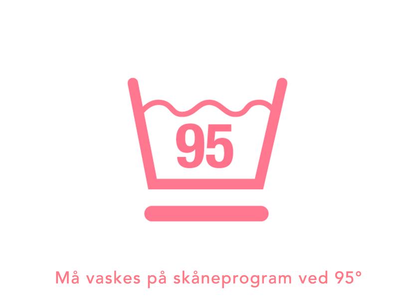 95skane.png