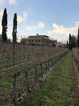 Colle Santa Mustiola winery Dec 2019.JPG