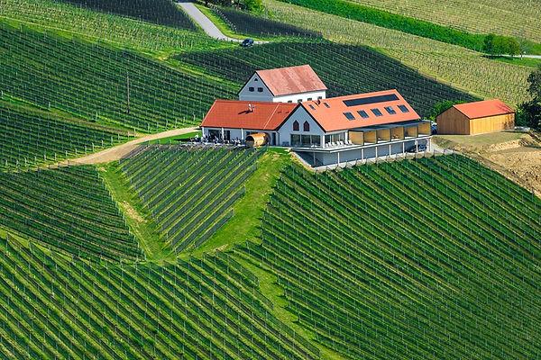 Weinschmiede Gamlitz Tscherne.jpg