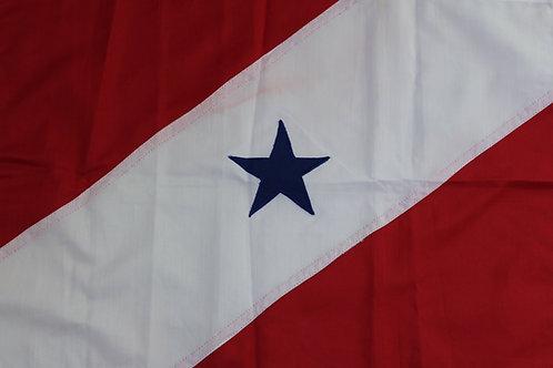 Bandeira: Pará