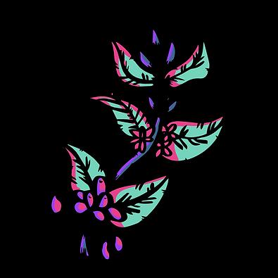 Transparent_Coffee Leaf.png