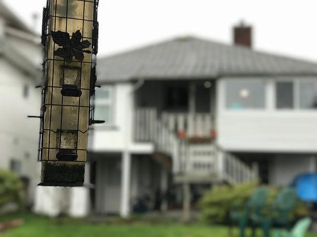 Cambie Oakridge Birdy House Upper Suite