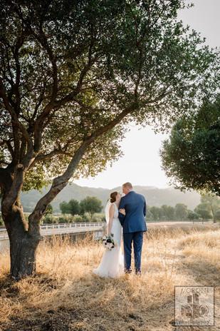 Fioroni-Wedding-Sunol-39.jpg