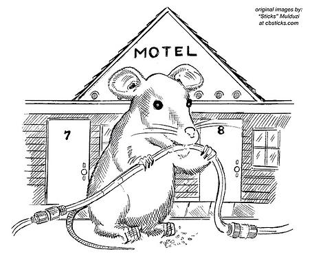 Motel Rat