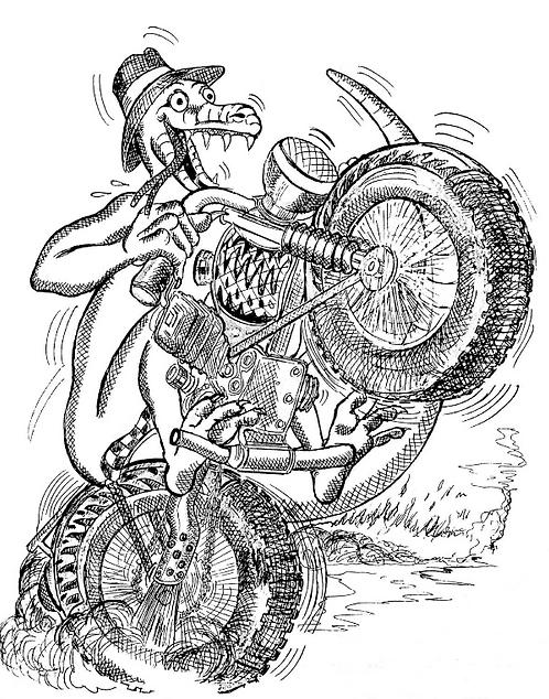 Motorbike Lizard