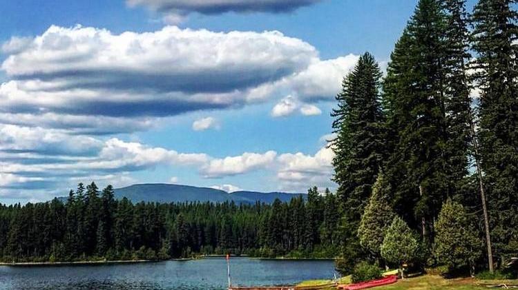 montana4.jpg