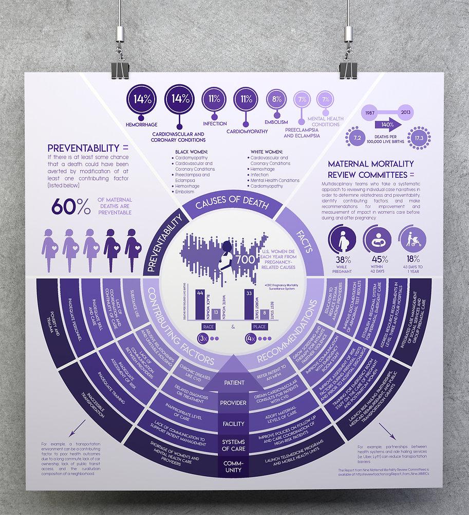 InfographicMockup.jpg