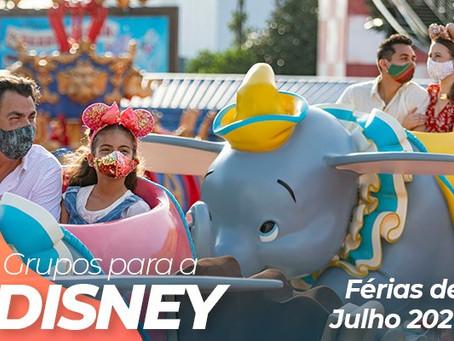 Grupos para a Disney (saindo de São Paulo)