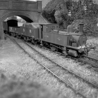 ex-L&SWR B4 Class No 30096 disturbs the peace as she clanks through Great Coles Wood with a rake of mixed SR vehicles
