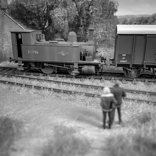 Captivated by steam. In her final BR livery with 1F motive power classification, ex-L&SWR B4 Class No 30096 stands at Great Coles Wood in attractive surroundings