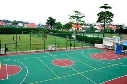 international-standard-basketball-court-