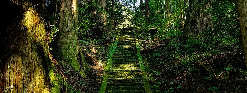 japan-1778543_1280_edited.png