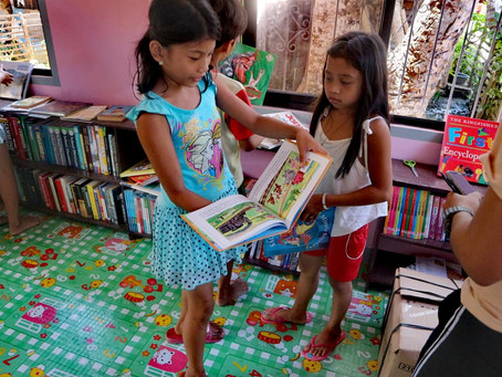 The Importance of Mini Libraryin Small Communities
