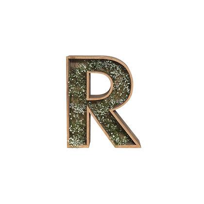 Písmeno R - KARTOONS