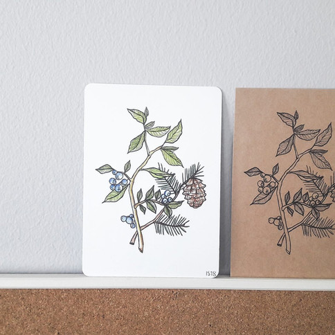 Jaatukauppa - postikortit