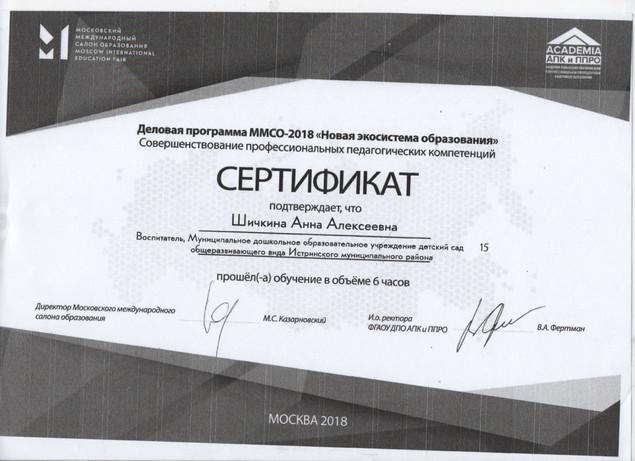 Сертификат ММСО 2018.jpg
