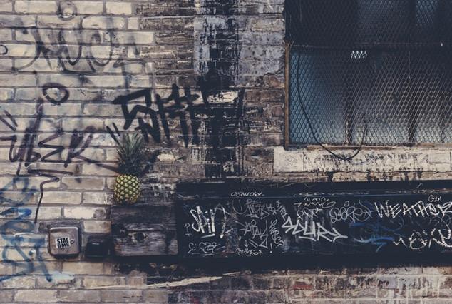 root pineapple possibility.jpeg