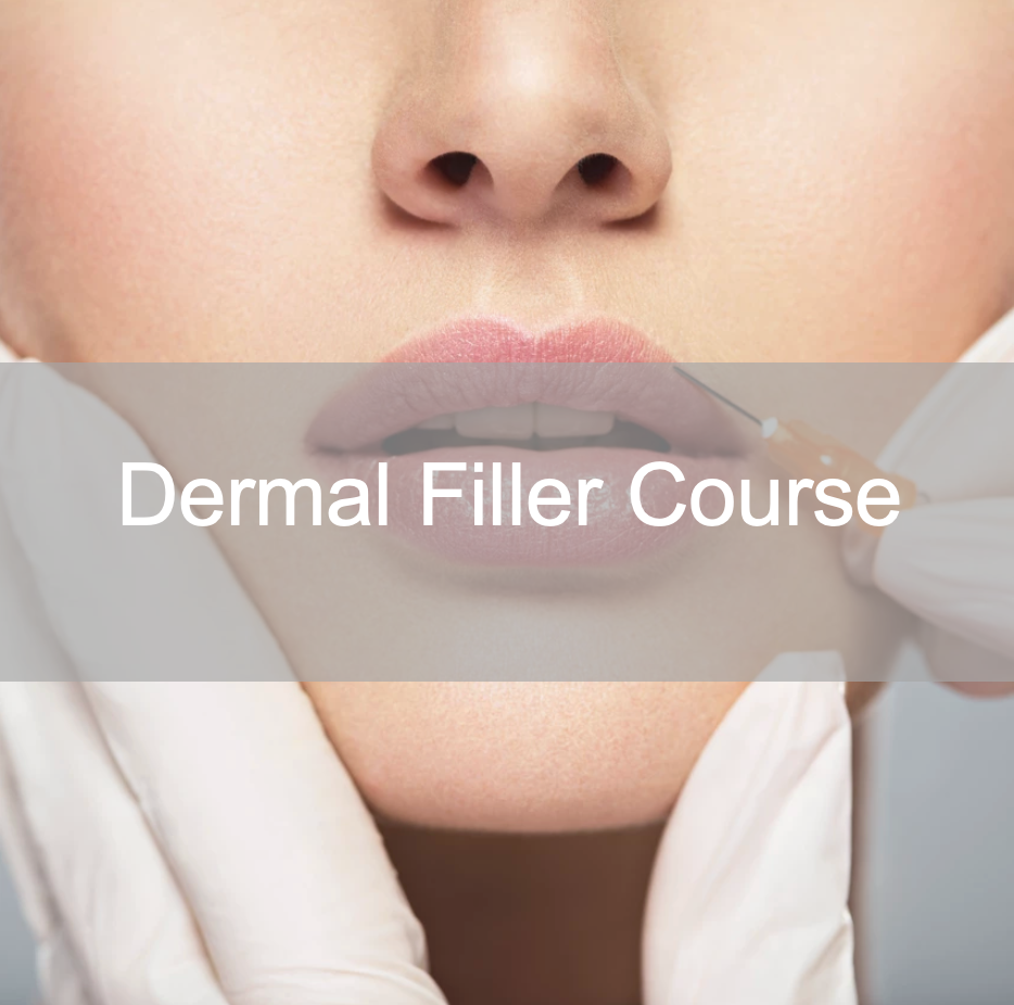 Dermal Filler Course