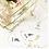 Thumbnail: Collection Etoiles