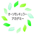 logo-facebook-academy.jpg