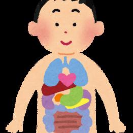 9/10 分子栄養学基礎セミナー知って納得あなたの体のメカニズム精神疾患編 in 札幌(終了)