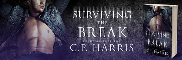 SurvivingtheBreak-TwitterBanner.jpg