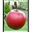 Thumbnail: 'Big Apple' by Richard Barrett (24 pages)