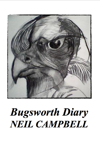 'Bugsworth Diary' by Neil Campbell (32 pages)