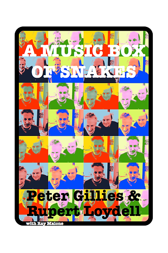 'A Music Book of Snakes' by Peter Gillies & Rupert Loydell (53 pages)