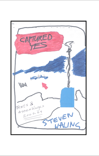 'Captured Yes' by Steven Walling (29 pages)