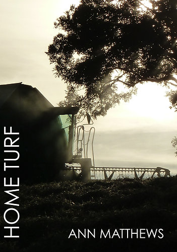'Home Turf' by Ann Matthews (102 pages)