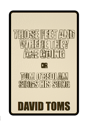 'Those Feet and Where they are Going...' by David Toms