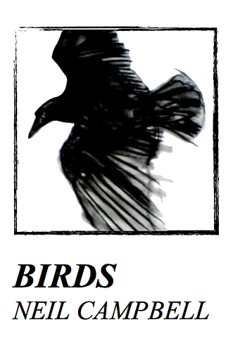 'Birds' by Neil Campbell (34 pages)