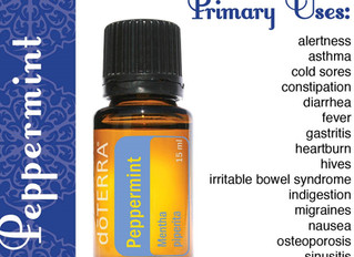 Peppermint Oil; the many uses
