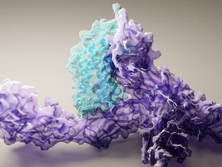 DeepMind's AI for protein structure is coming to the masses