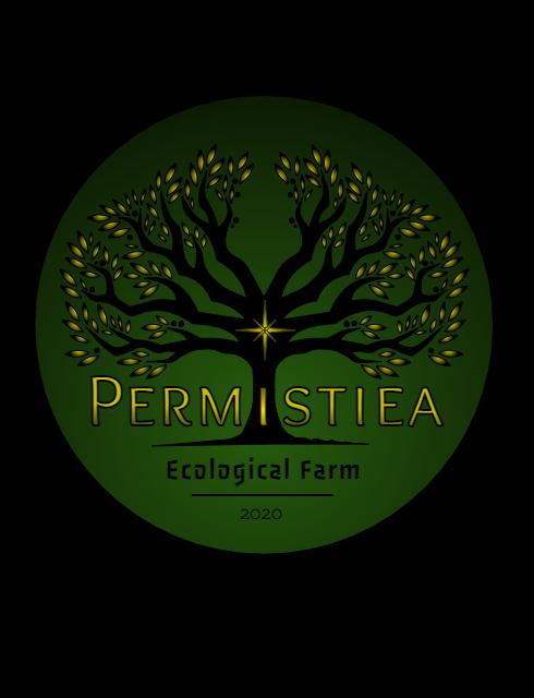 Permistiea_edited_edited.png