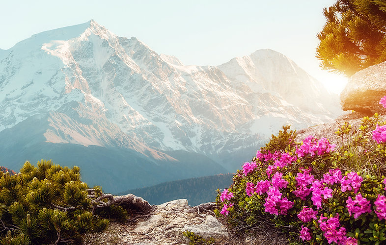 Unsurpassed sunrise in the mountains wit