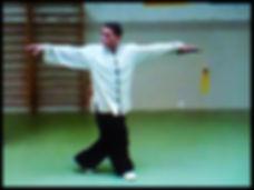 tai chi napoli corsi la maison du tango maestro
