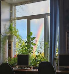 Радуга в окне