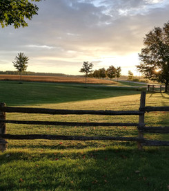 The fields at golden hour