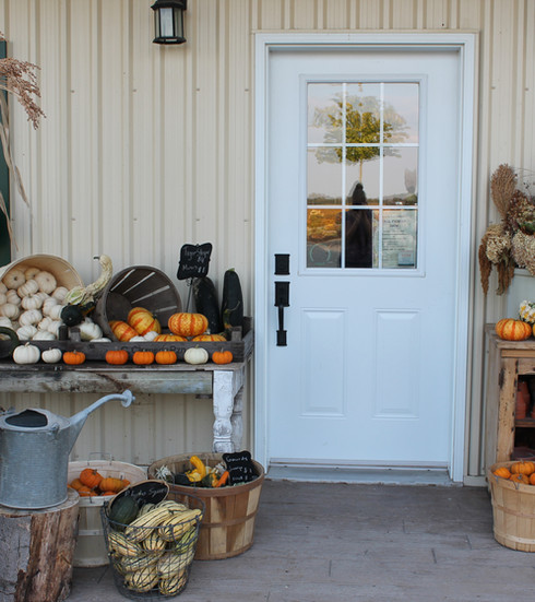 Fall storefront