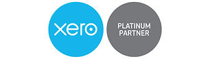 Business Accountant Financial Planning Services Xero
