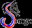 logo 1 transparent mestria songe.png