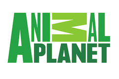 AnimalPlanet02.png