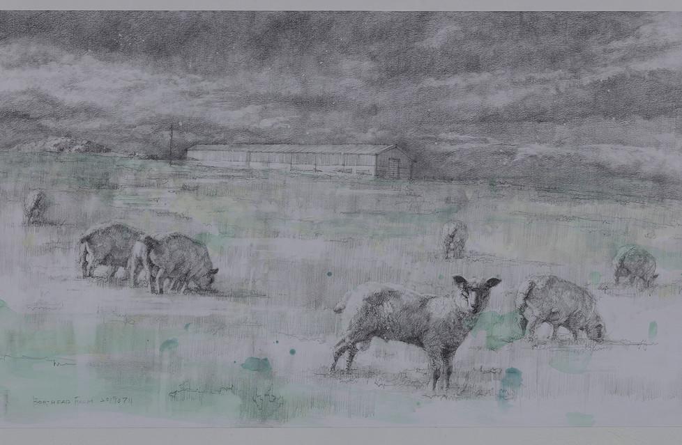 Boghead Farm 3